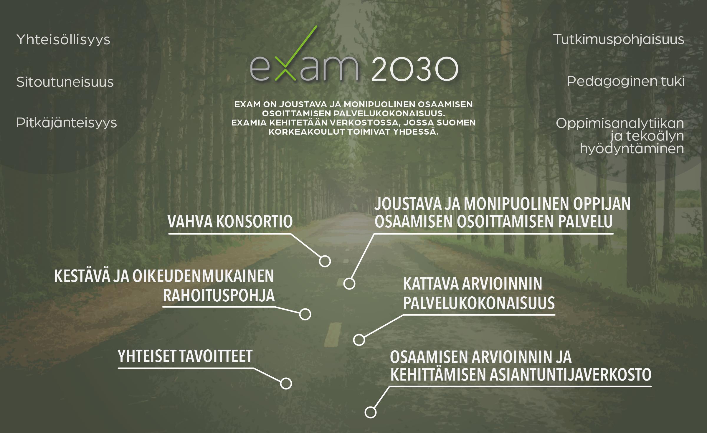 EXAM 2030 -vision infografiikka, joka avataan alla tekstinä. Ylhäällä EXAM visiolause ja reunoilla arvot. Taustalla puiden reunustama tie, johon tavoitteet on aseteltu järjestyksessä.